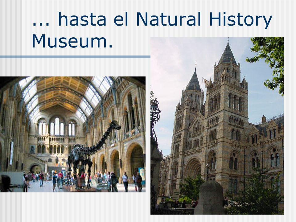 ... hasta el Natural History Museum.