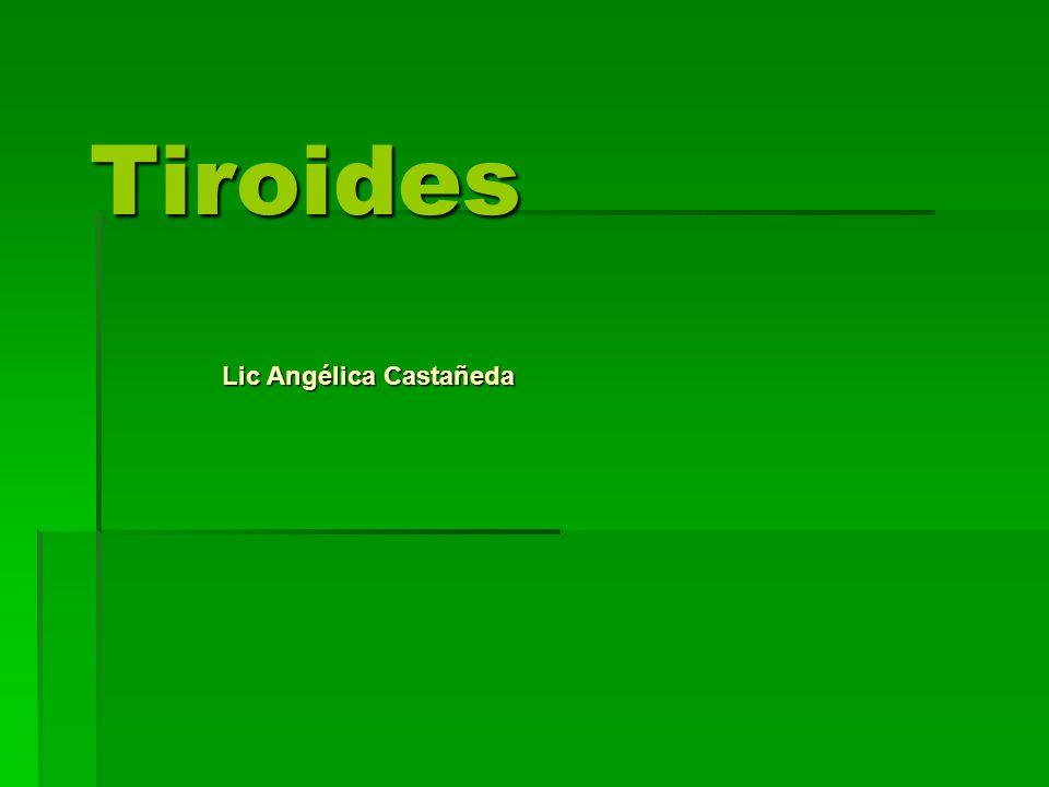 Lic Angélica Castañeda