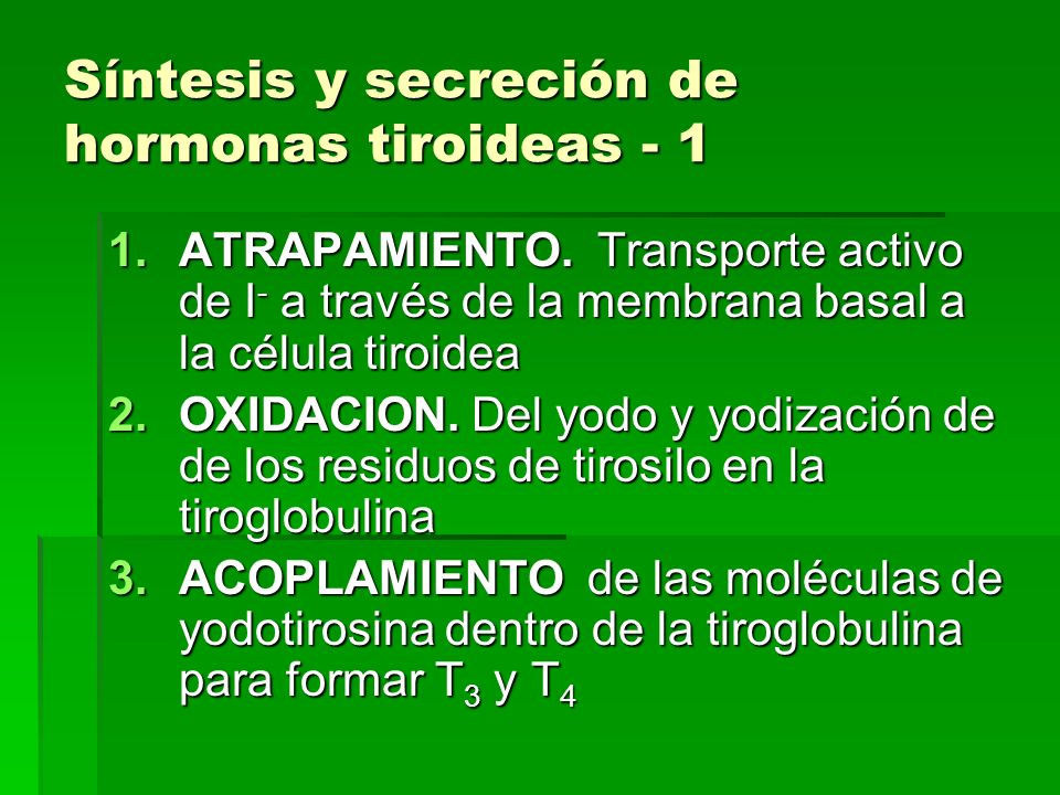 Síntesis y secreción de hormonas tiroideas - 1