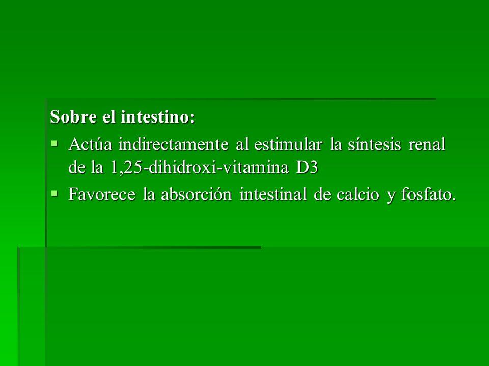 Sobre el intestino: Actúa indirectamente al estimular la síntesis renal de la 1,25-dihidroxi-vitamina D3.