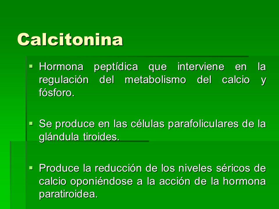 Calcitonina Hormona peptídica que interviene en la regulación del metabolismo del calcio y fósforo.
