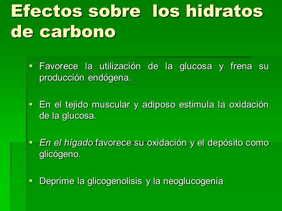 Efectos sobre los hidratos de carbono
