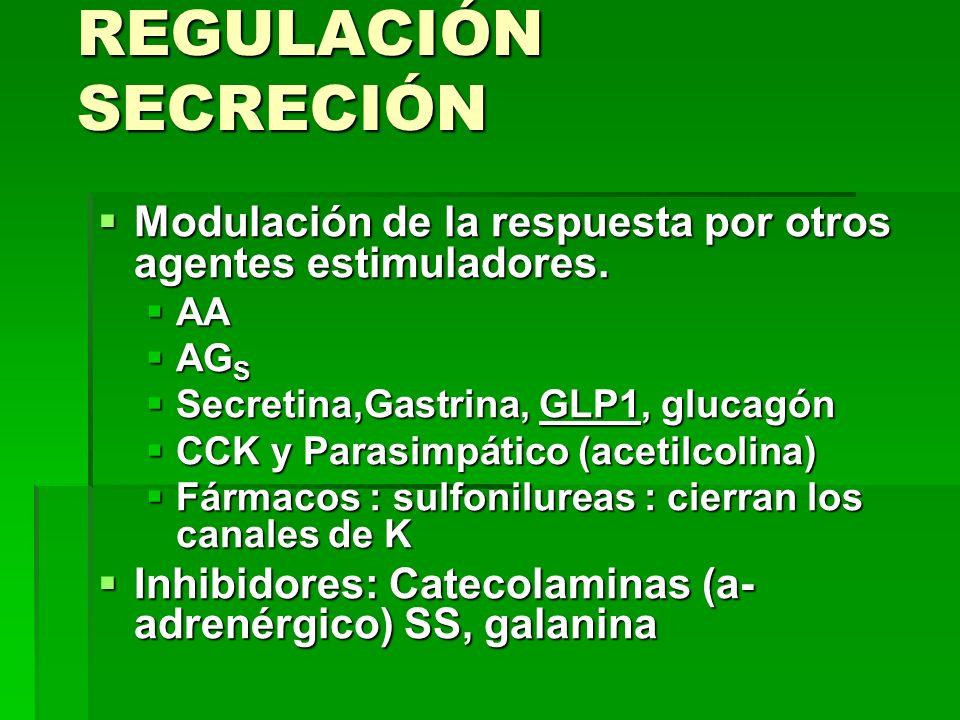 REGULACIÓN SECRECIÓN Modulación de la respuesta por otros agentes estimuladores. AA AGS. Secretina,Gastrina, GLP1, glucagón.