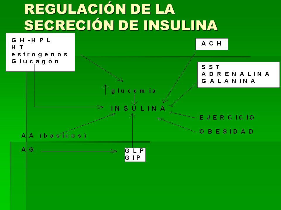 REGULACIÓN DE LA SECRECIÓN DE INSULINA