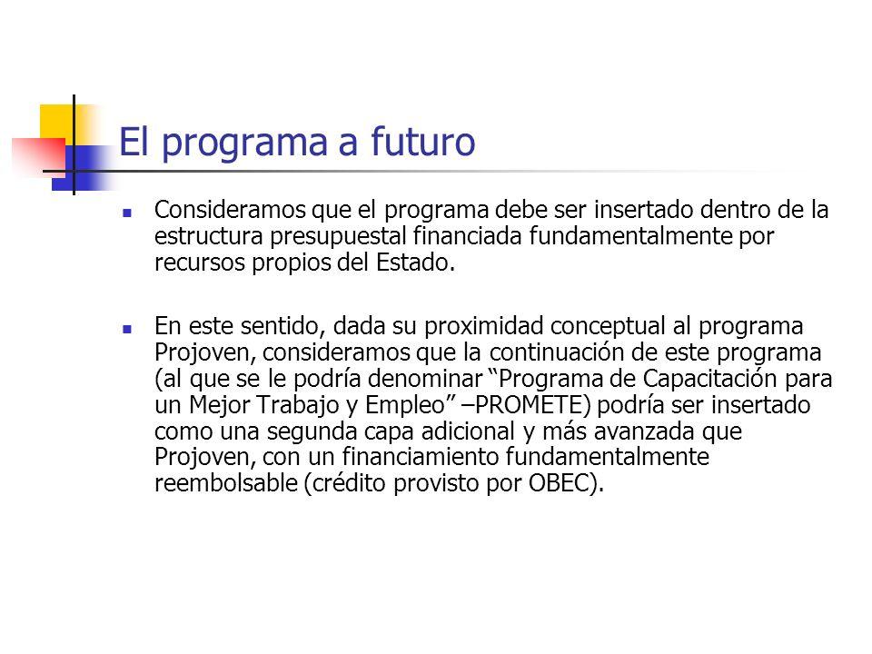El programa a futuro