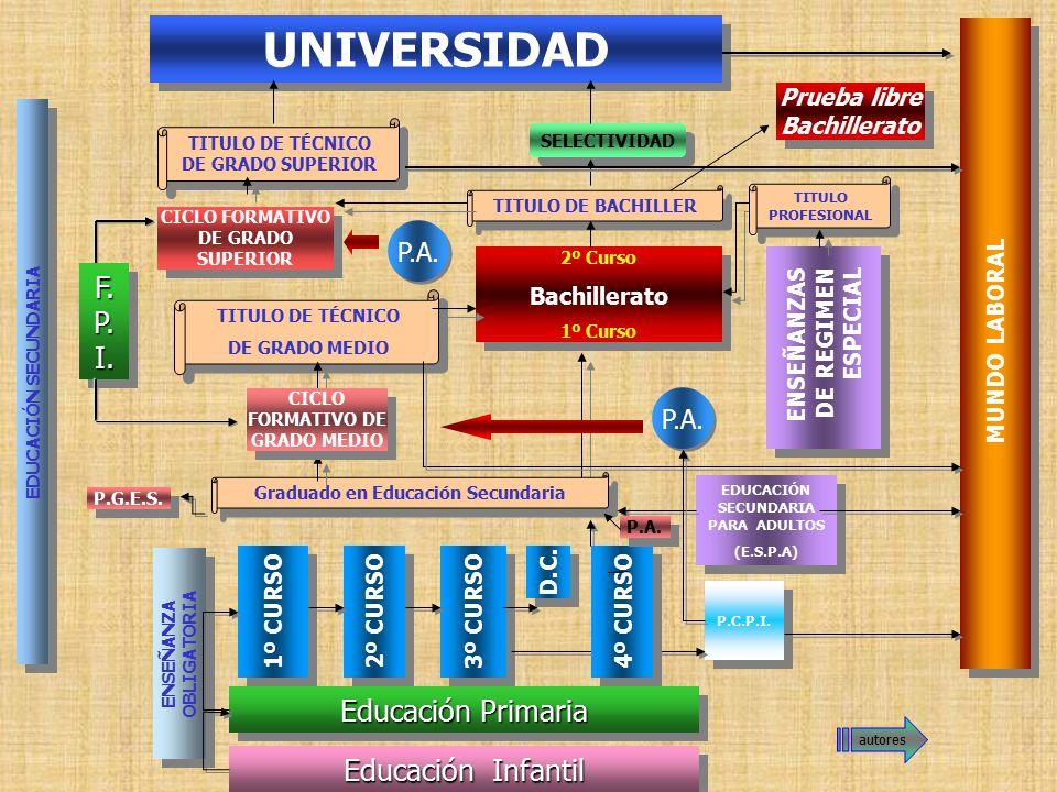 UNIVERSIDAD F.P.I. Educación Primaria Educación Infantil P.A. P.A.