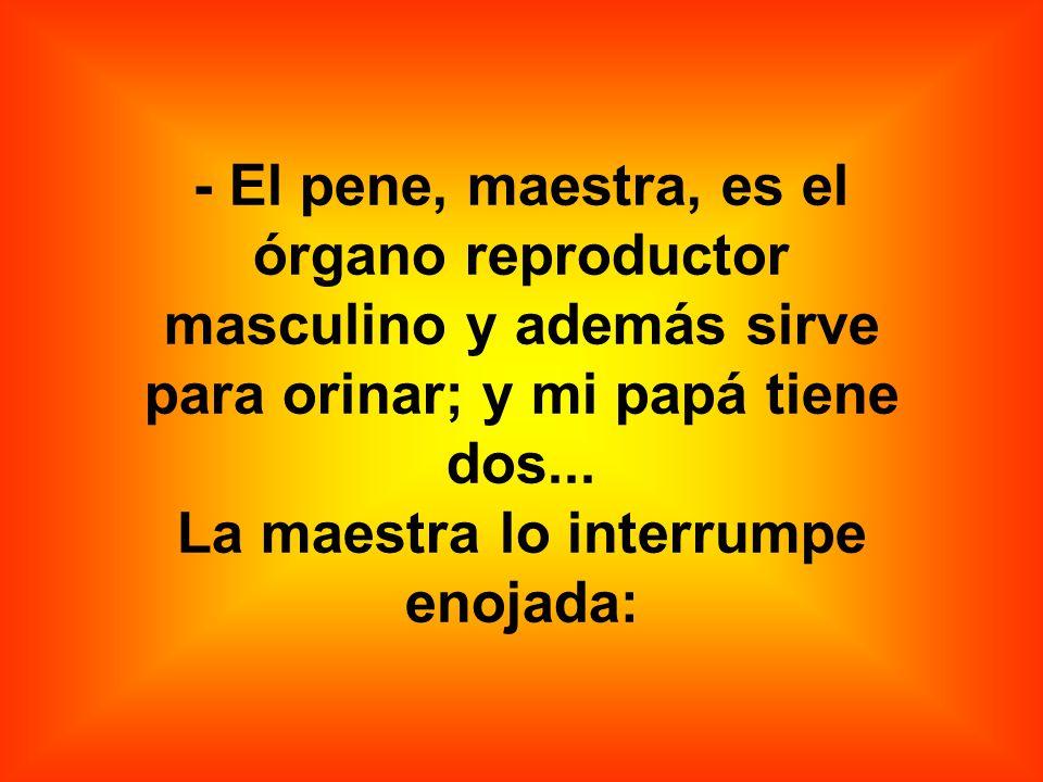 - El pene, maestra, es el órgano reproductor masculino y además sirve para orinar; y mi papá tiene dos...