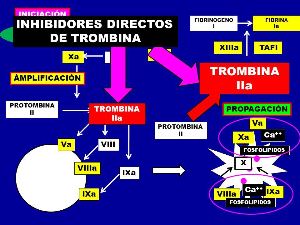 INHIBIDORES DIRECTOS DE TROMBINA TROMBINA IIa TROMBINA IIa INICIACIÓN
