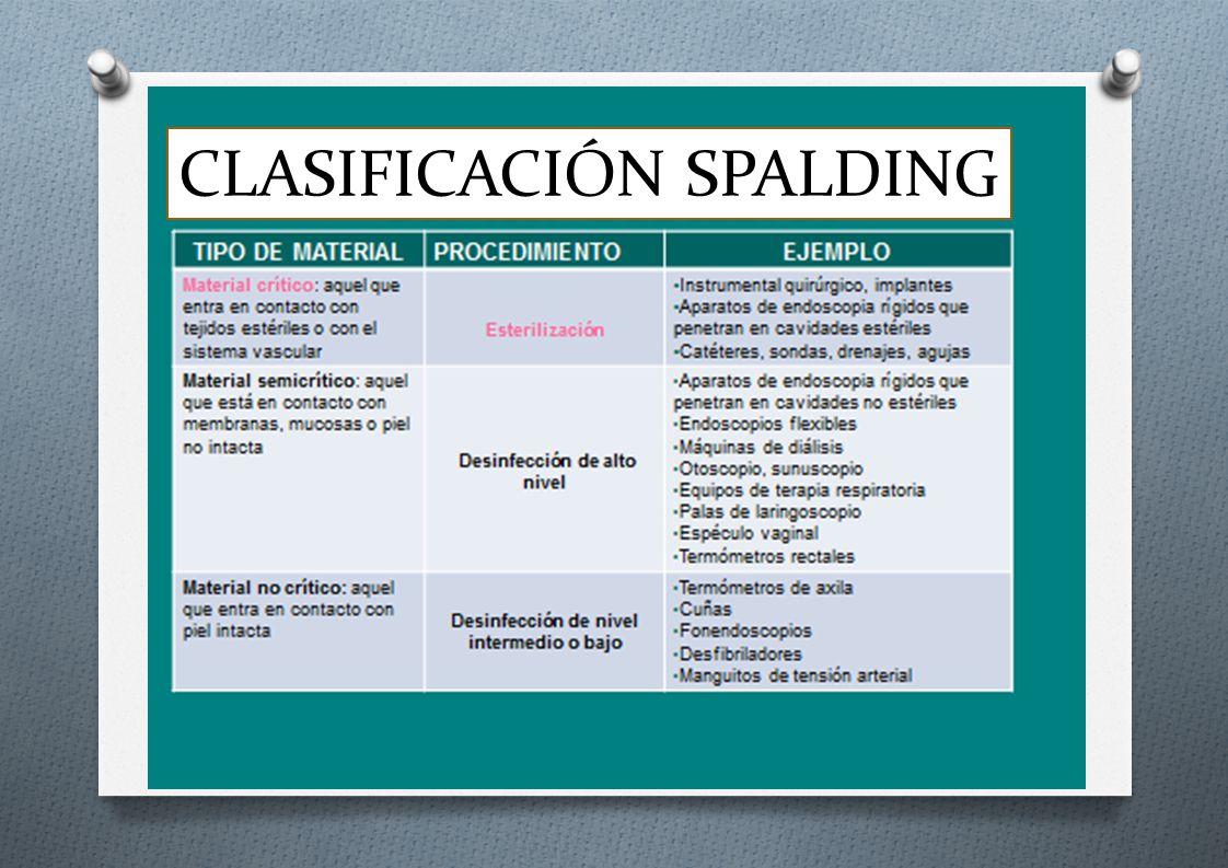 CLASIFICACIÓN SPALDING