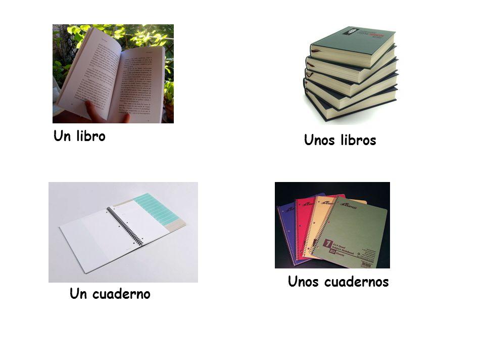 Un libro Unos libros Unos cuadernos Un cuaderno