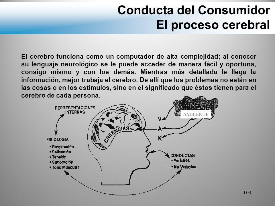 Conducta del Consumidor El proceso cerebral