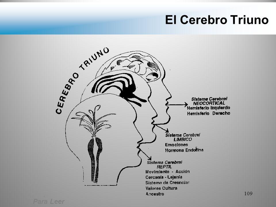 El Cerebro Triuno Para Leer
