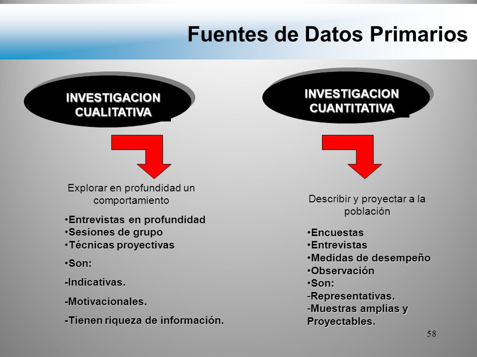 Fuentes de Datos Primarios