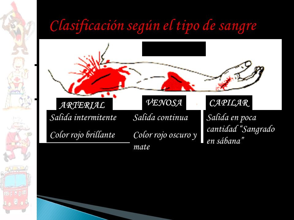 Clasificación según el tipo de sangre