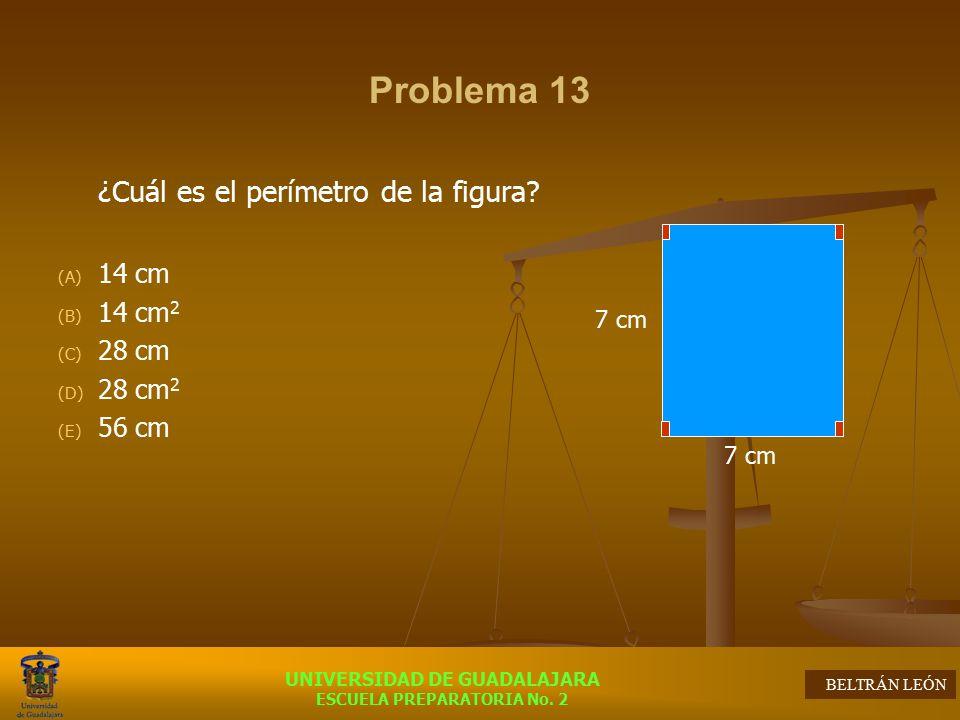 Problema 13 ¿Cuál es el perímetro de la figura 14 cm 14 cm2 28 cm