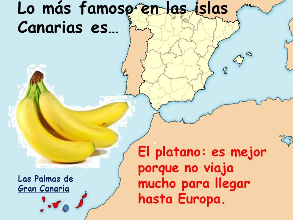 Lo más famoso en las islas Canarias es…