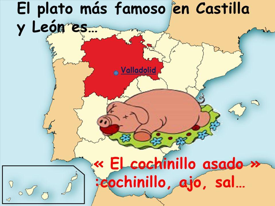 El plato más famoso en Castilla y León es…