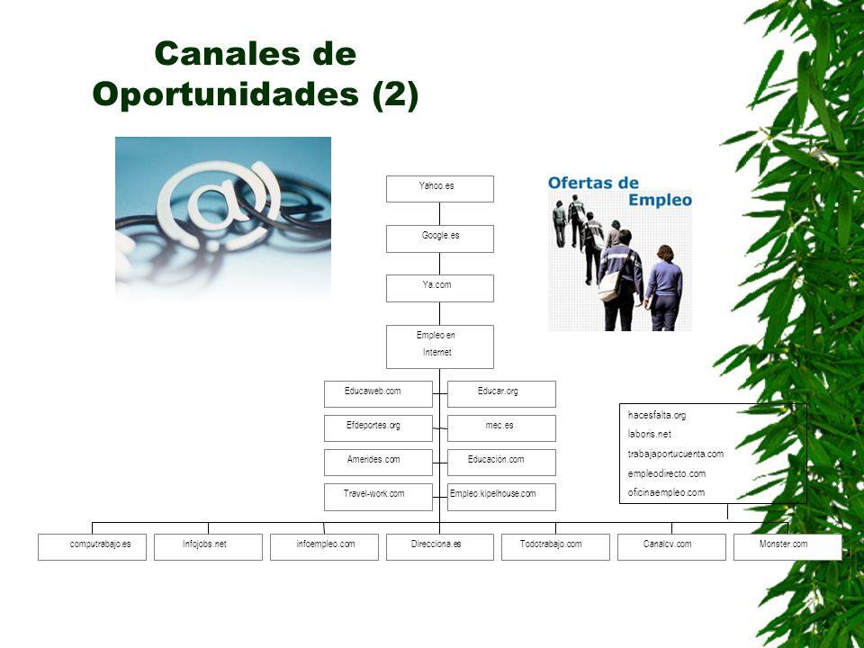 Canales de Oportunidades (2)