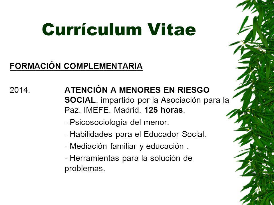 Currículum Vitae FORMACIÓN COMPLEMENTARIA