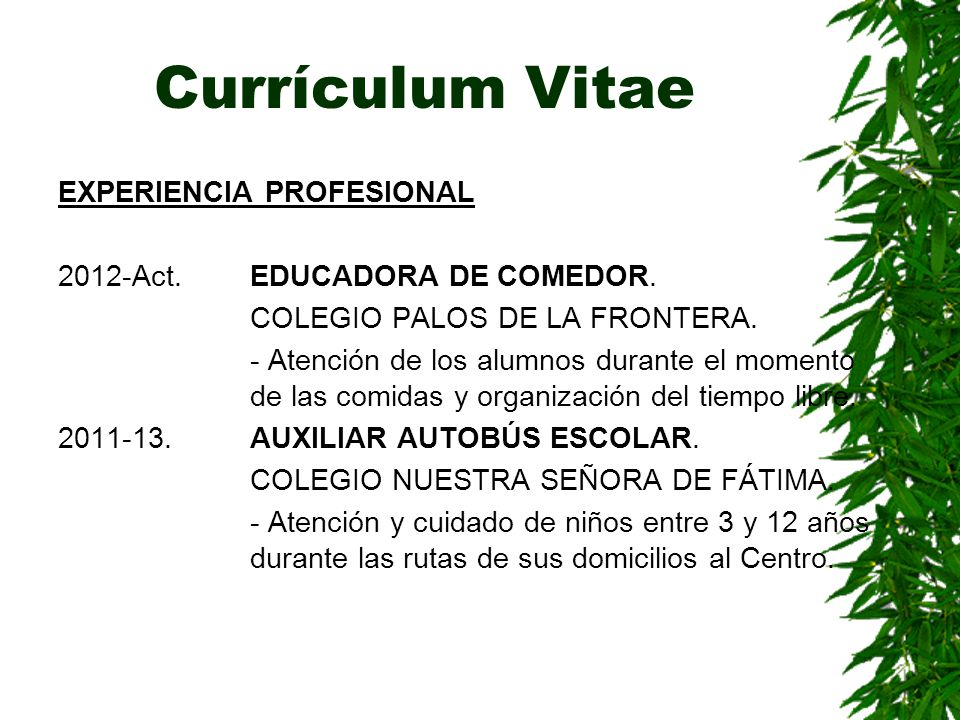 Currículum Vitae EXPERIENCIA PROFESIONAL