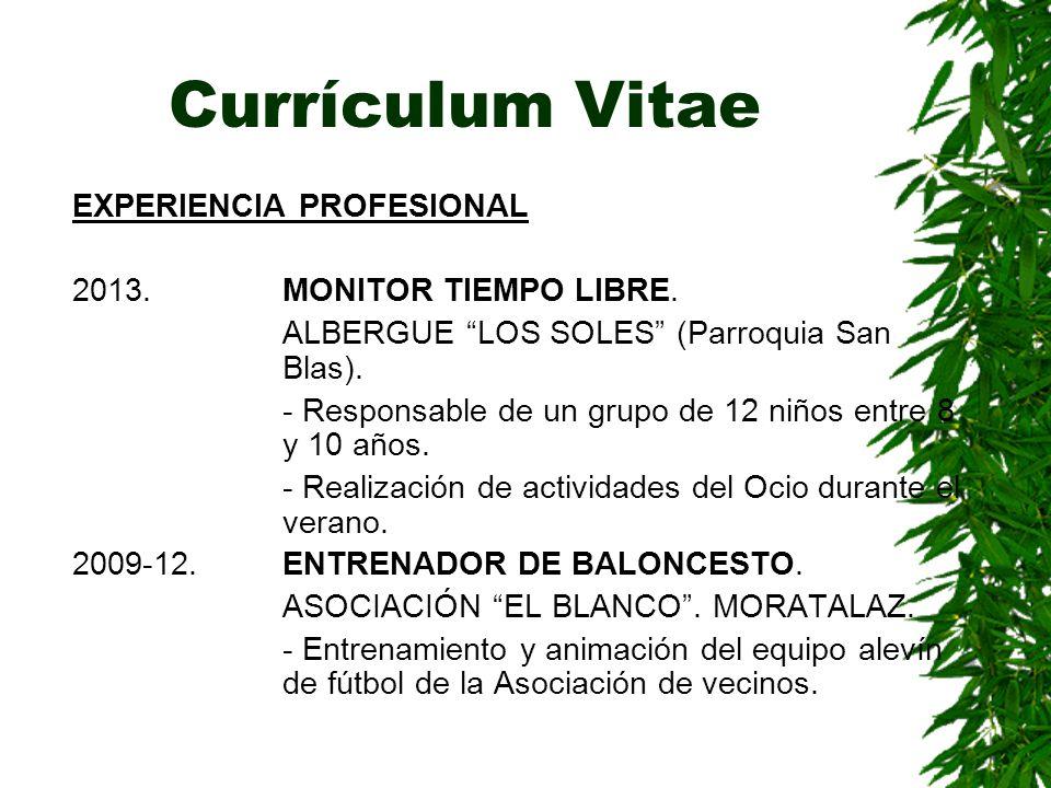 Currículum Vitae EXPERIENCIA PROFESIONAL 2013. MONITOR TIEMPO LIBRE.