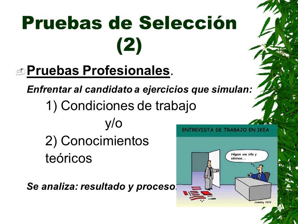 Pruebas de Selección (2)