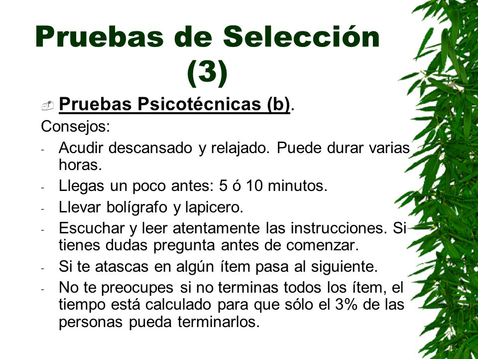 Pruebas de Selección (3)