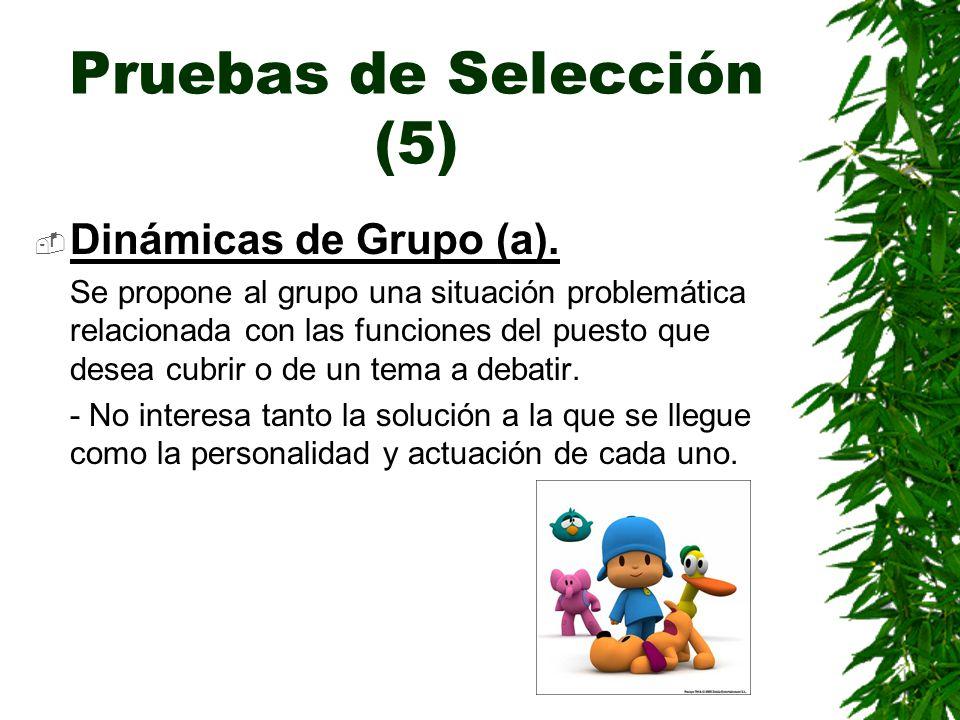 Pruebas de Selección (5)