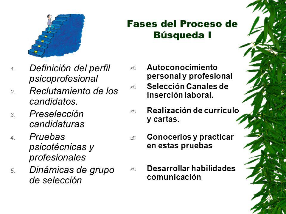 Fases del Proceso de Búsqueda I