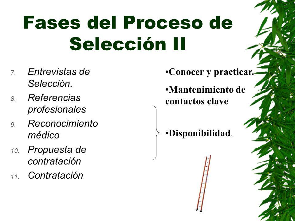 Fases del Proceso de Selección II