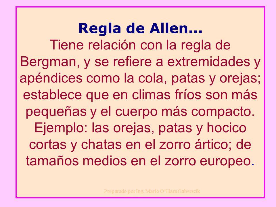 Regla de Allen... Tiene relación con la regla de Bergman, y se refiere a extremidades y apéndices como la cola, patas y orejas; establece que en climas fríos son más pequeñas y el cuerpo más compacto. Ejemplo: las orejas, patas y hocico cortas y chatas en el zorro ártico; de tamaños medios en el zorro europeo.