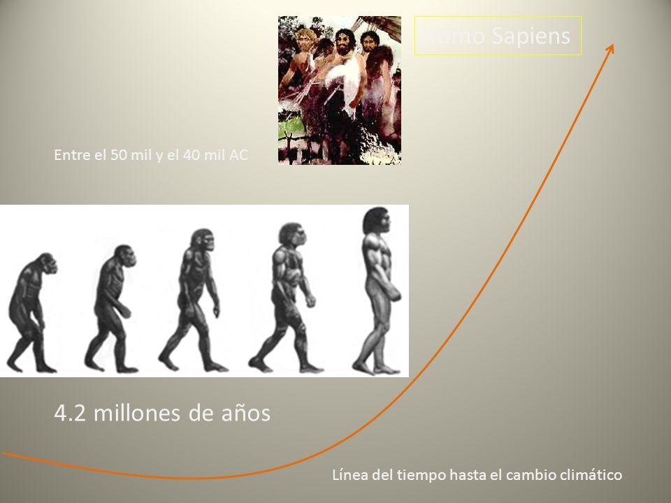 Homo Sapiens 4.2 millones de años Entre el 50 mil y el 40 mil AC