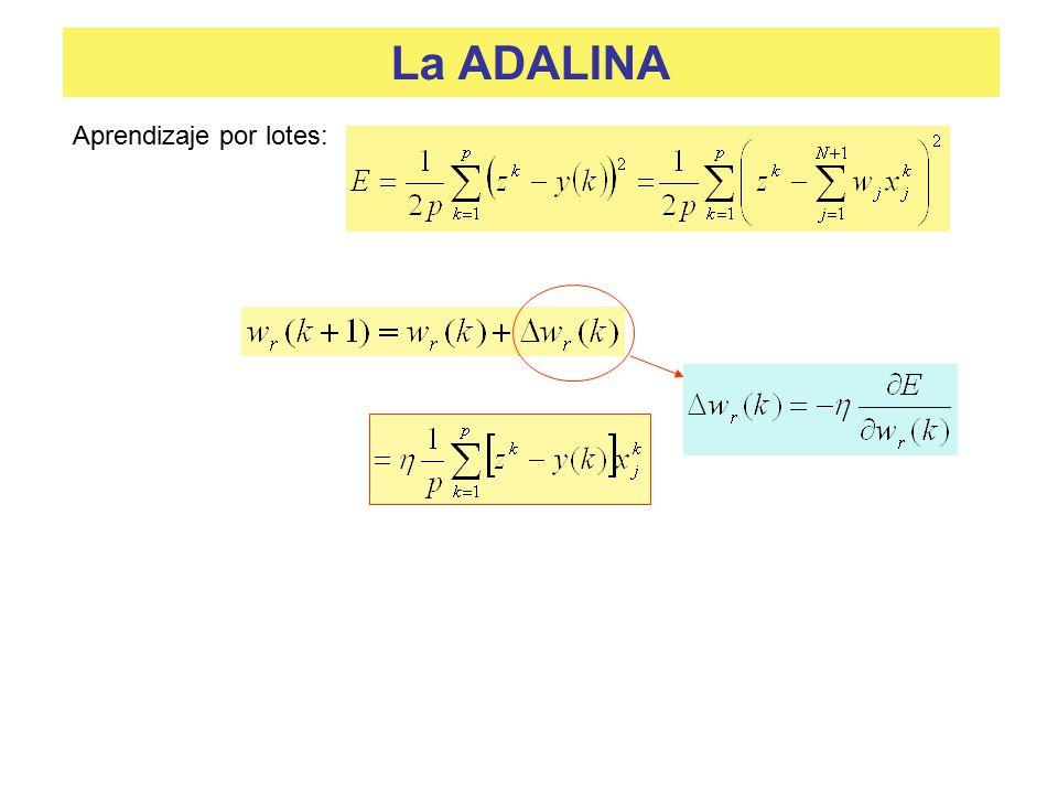 La ADALINA Aprendizaje por lotes: