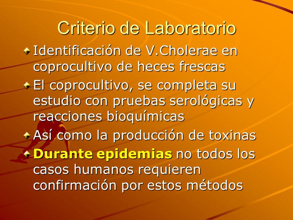 Criterio de Laboratorio