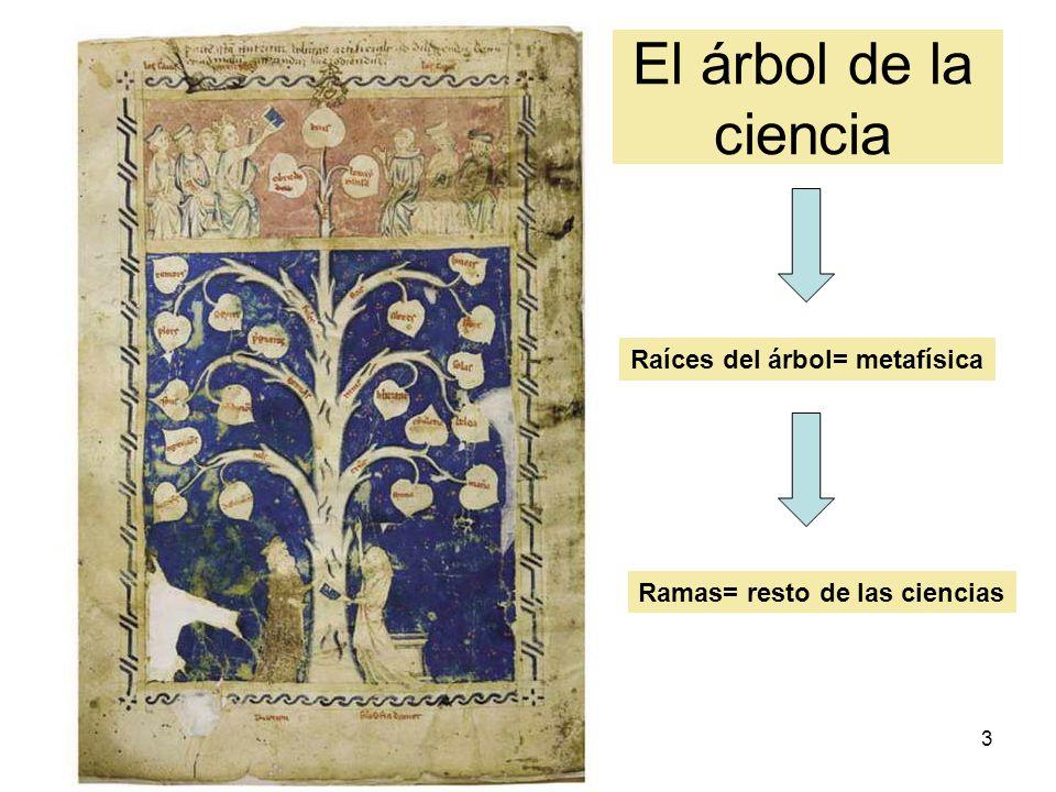 El árbol de la ciencia Ciencia suprema Raíces del árbol= metafísica
