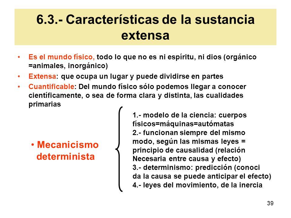 6.3.- Características de la sustancia extensa