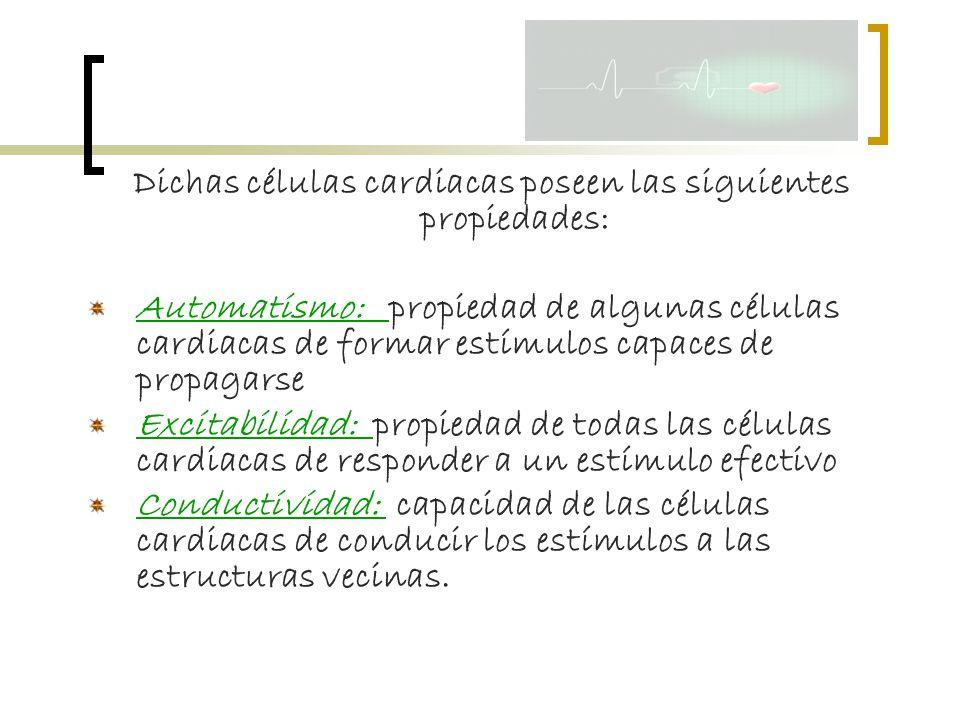 Dichas células cardiacas poseen las siguientes propiedades: