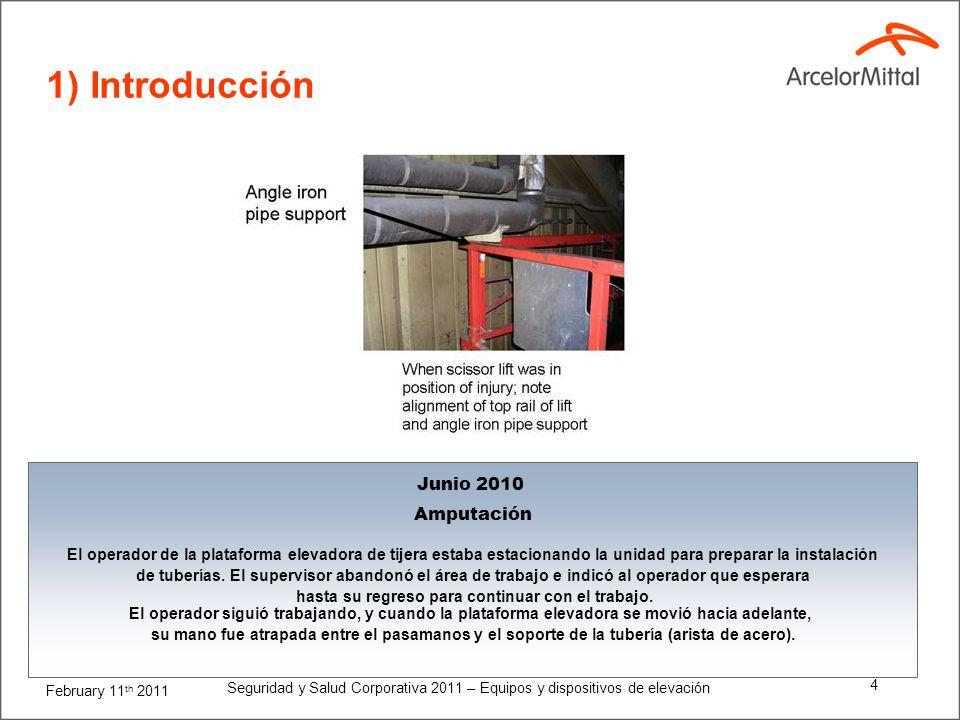 1) Introducción Junio 2010 Amputación