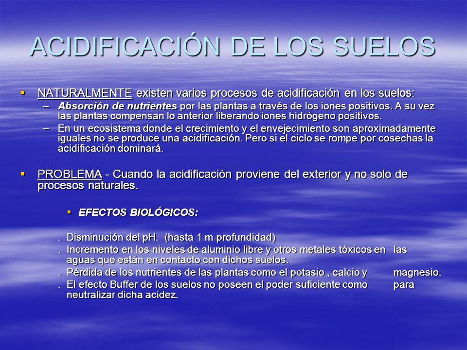 ACIDIFICACIÓN DE LOS SUELOS