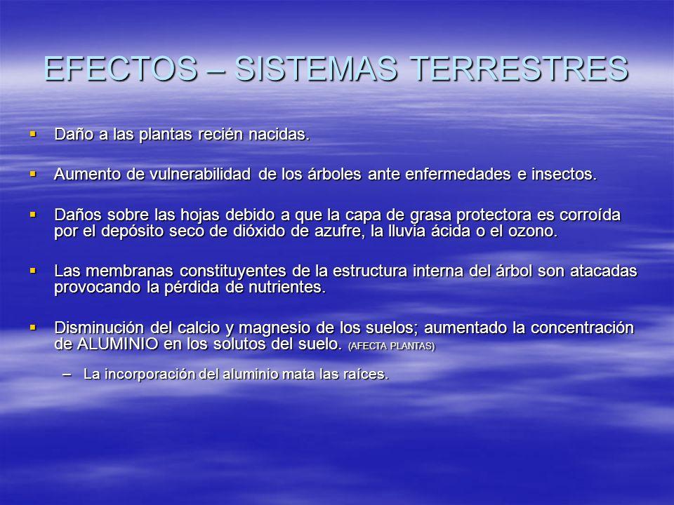 EFECTOS – SISTEMAS TERRESTRES