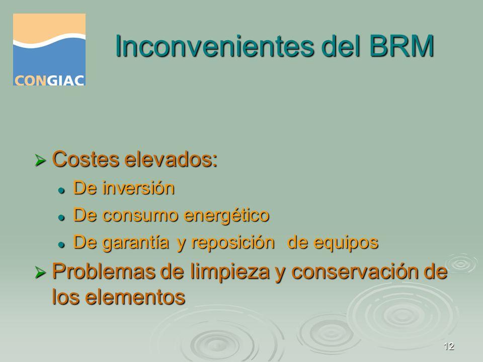 Inconvenientes del BRM