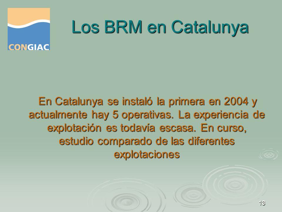 Los BRM en Catalunya