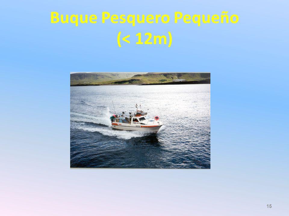 Buque Pesquero Pequeño (< 12m)