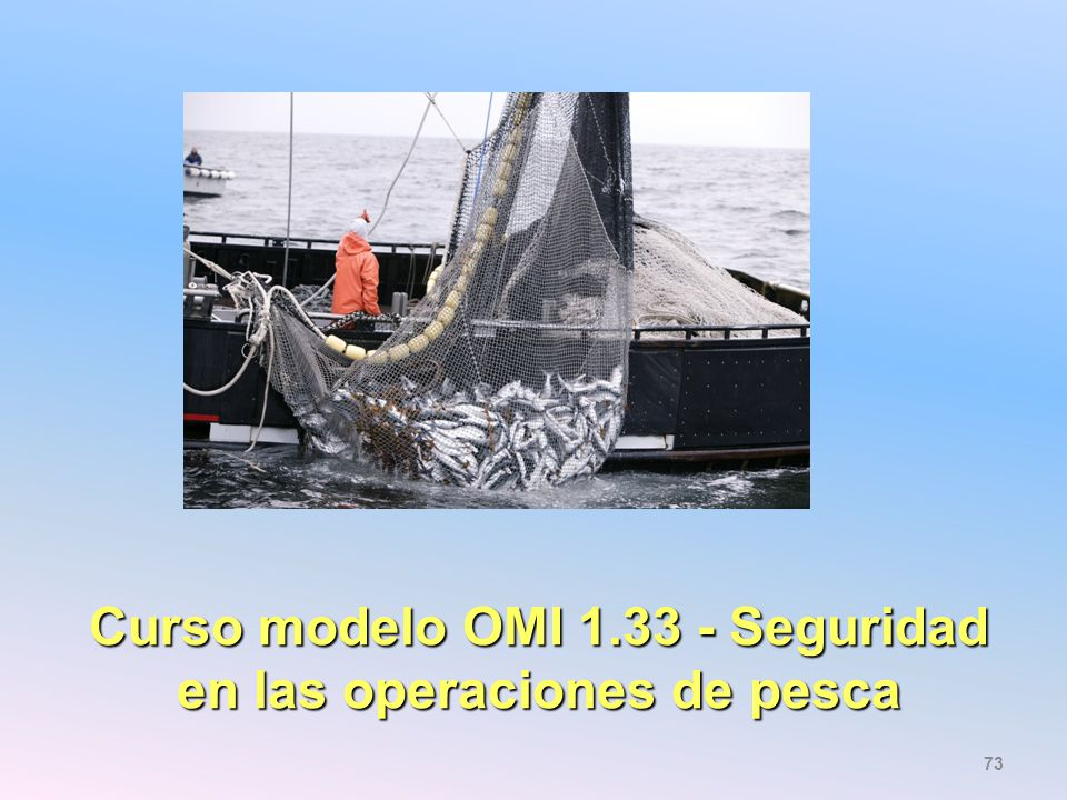 Curso modelo OMI 1.33 - Seguridad en las operaciones de pesca