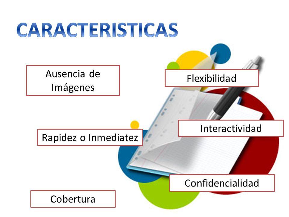 CARACTERISTICAS Ausencia de Imágenes Flexibilidad Interactividad
