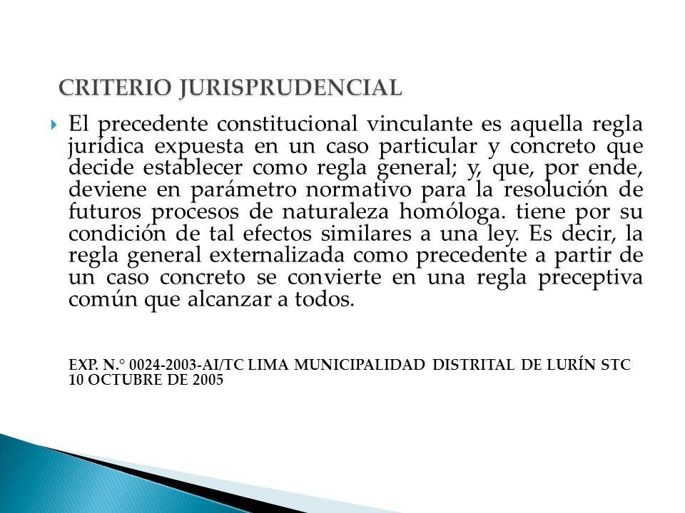 CRITERIO JURISPRUDENCIAL