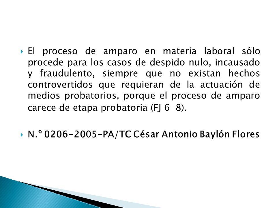 El proceso de amparo en materia laboral sólo procede para los casos de despido nulo, incausado y fraudulento, siempre que no existan hechos controvertidos que requieran de la actuación de medios probatorios, porque el proceso de amparo carece de etapa probatoria (FJ 6-8).