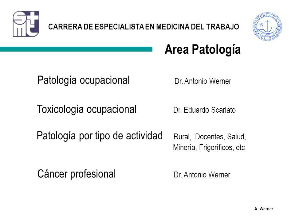 Area Patología Patología ocupacional Dr. Antonio Werner