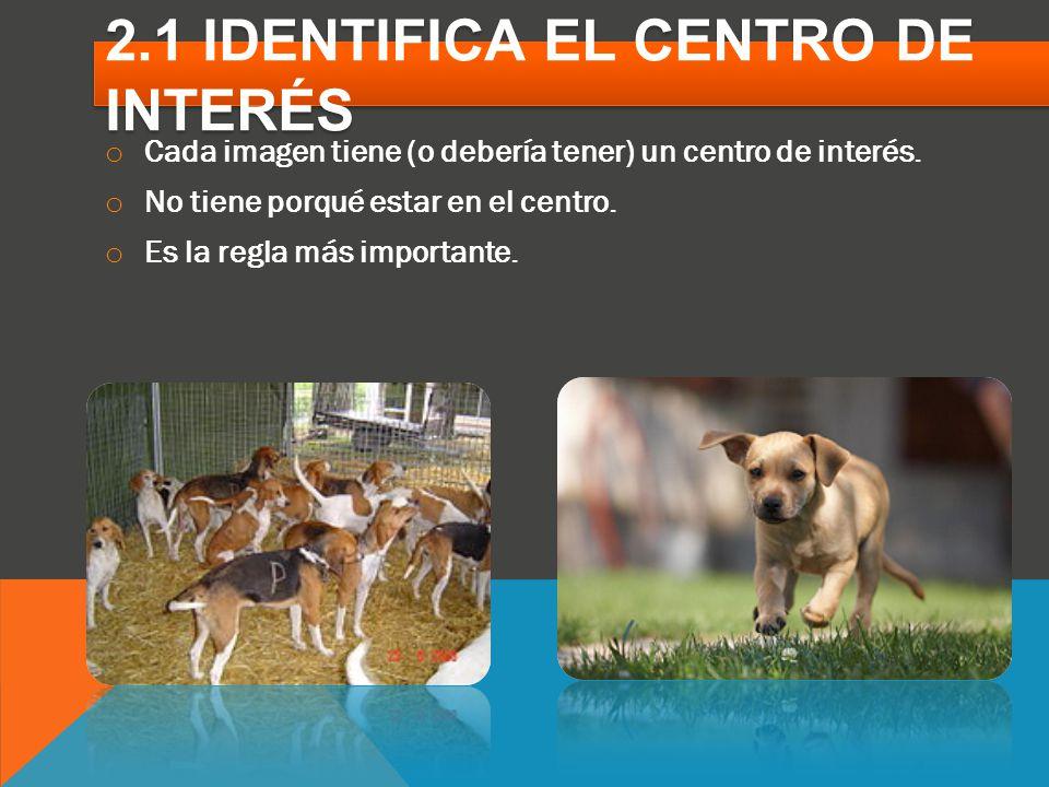 2.1 IDENTIFICA EL CENTRO DE INTERÉS