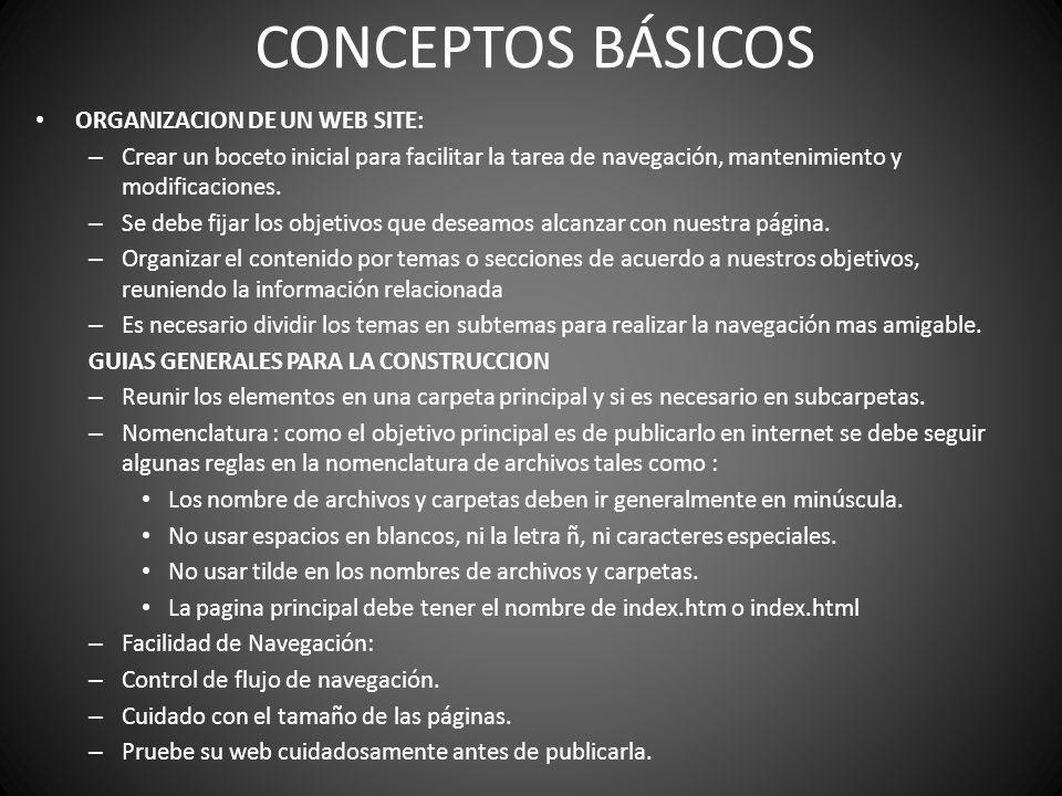CONCEPTOS BÁSICOS ORGANIZACION DE UN WEB SITE:
